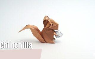 اوریگامی -چینچلا